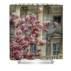 United States Capitol - Magnolia Tree Shower Curtain by Marianna Mills