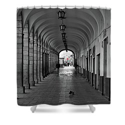 Shower Curtain featuring the photograph Universal Sign by David Chandler