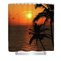 Unknown Paradise Shower Curtain