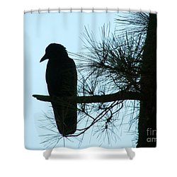 Unknown Visitor Shower Curtain