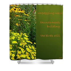 Shower Curtain featuring the digital art Unpegging Wash Haiga by Judi and Don Hall