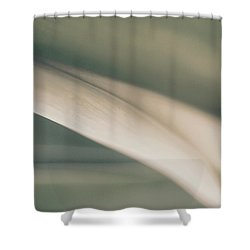 Unraveling Light Shower Curtain