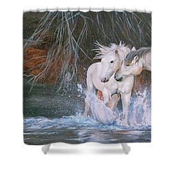 Unspoken Persuasion Shower Curtain by Karen Kennedy Chatham