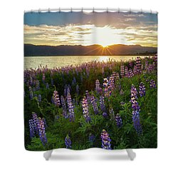 Shower Curtain featuring the photograph Untamed Beauty by Tassanee Angiolillo