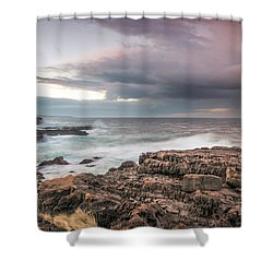 Untamed Coast Shower Curtain
