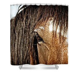 Untamed Shower Curtain by Lincoln Rogers