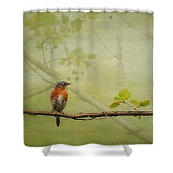 Until Spring Shower Curtain by Lois Bryan