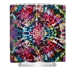1-offspring While I Was On The Path To Perfection 1 Shower Curtain