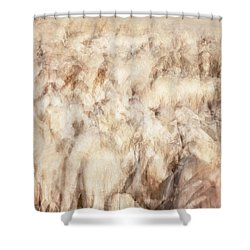 Untitled #3939, From The Soul Searching Series Shower Curtain