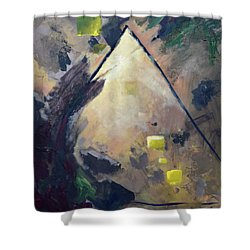 Untitled Abstract 730-17 Shower Curtain