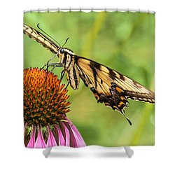Untitled Butterfly Shower Curtain