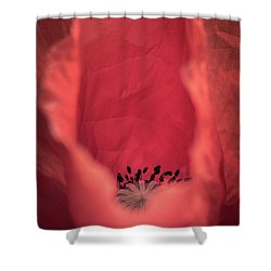 Shower Curtain featuring the photograph Untouched by Hannes Cmarits
