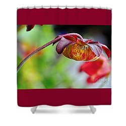 Unusual Aquatic Flower Shower Curtain by Kaye Menner