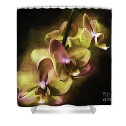 Shower Curtain featuring the digital art Up And Coming by Ken Frischkorn
