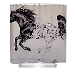 Up Close And Personal With Appaloosa's Shower Curtain
