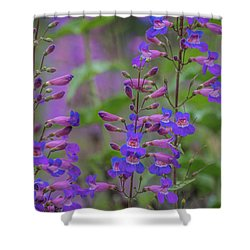 Up Close And Personal With Beauty Shower Curtain