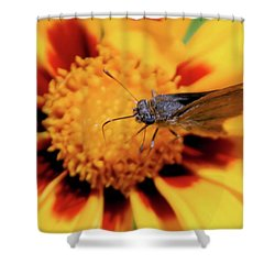 Up Close Shower Curtain by Karol Livote