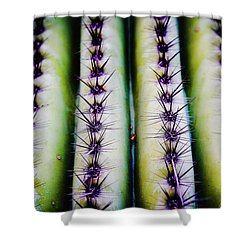 Up Close Look Shower Curtain