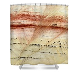 Shower Curtain featuring the photograph Up Close Painted Hills by Greg Nyquist