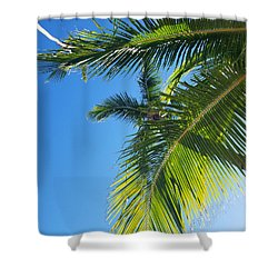 Up-palm Shower Curtain
