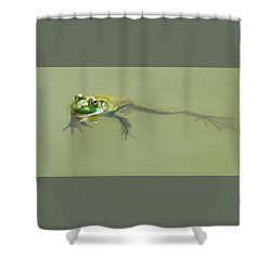 Up Periscope Shower Curtain