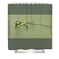 Up Periscope Shower Curtain