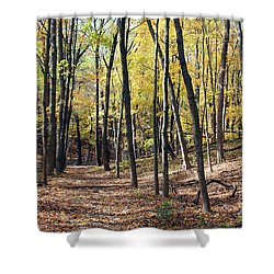 Up The Woodland Trail Shower Curtain