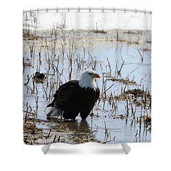 Up To His Knees Shower Curtain