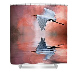 Up. Up And Away Shower Curtain by Cyndy Doty