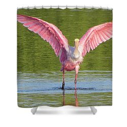 Up, Up And Away Sanibel Spoonbill Shower Curtain