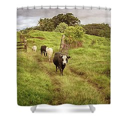Shower Curtain featuring the photograph Upcountry Ranch by Susan Rissi Tregoning