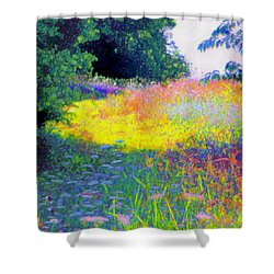 Uphill In The Meadow Shower Curtain by Shirley Moravec