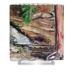 Upper Provo River Falls Shower Curtain by Sherril Porter