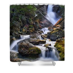 Shower Curtain featuring the photograph Upper Race Brook Falls 2017 by Bill Wakeley