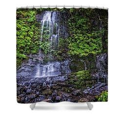 Upper Terrace Falls Shower Curtain by Joe Hudspeth