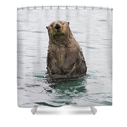 Upright Sea Otter Shower Curtain