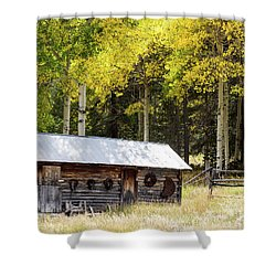 Uptop A Colorado Ghost Town Shower Curtain by Nadja Rider