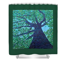 Upward Treejectory Shower Curtain