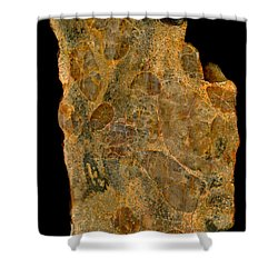 Uranium Ore Conglomerate Shower Curtain by Ted Kinsman