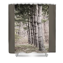 Urban Forestry Shower Curtain