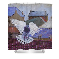 Urban Pigeon Shower Curtain
