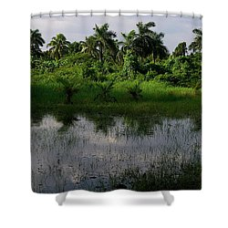 Urban Swamp Shower Curtain