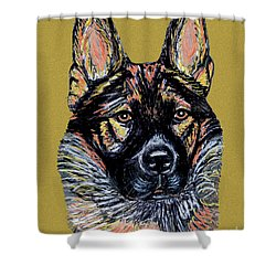 Shower Curtain featuring the painting Urlike Gsd by Ania M Milo