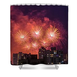 Usa 3 Shower Curtain by Ross G Strachan