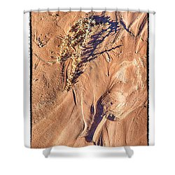 Utah Sand Shower Curtain by R Thomas Berner