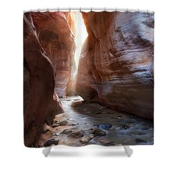 Utah's Underworld Shower Curtain