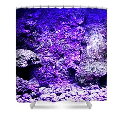Shower Curtain featuring the photograph Uw Coral Stone 2 by Francesca Mackenney