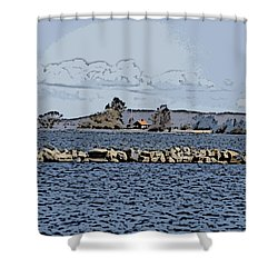 Vaennern Lake Shower Curtain
