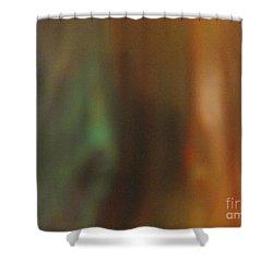 Vague 12 Shower Curtain