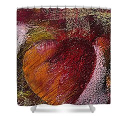 Valentine Heart Shower Curtain by David Patterson